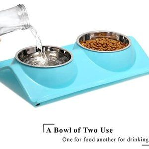 Double Dog Cat Bowls No-Spill Station